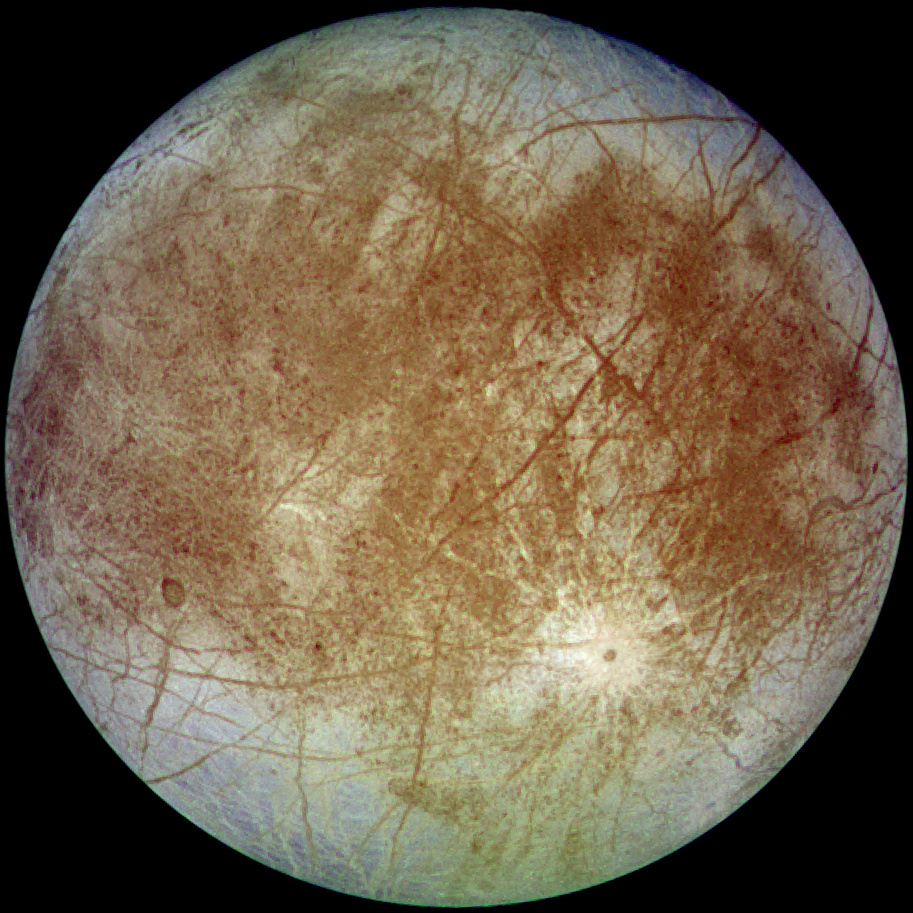 Life on Europa?  Who Cares?